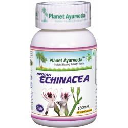 Indická Echinacea 60 tabl. Planet Ayurveda