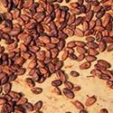 Káva, kávoviny, kakao